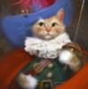 кот-мушкетёр