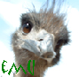fincreed userpic