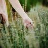 рука в траве