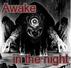 dorchadas: Awake in the Night