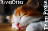 riverotter1951: Writerverse [sleeping cat]