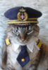 адмиралыч
