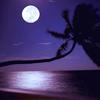 xclaire_delunex: moon summer