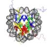 chromatin03