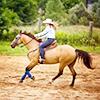 ラシヤ: Horses :: Western Riding