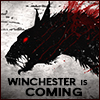 Winchester is Cioming