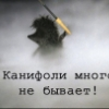 xomachok userpic