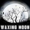 WaxingMoon