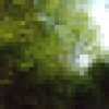 sharlasweb userpic