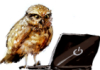 owl_and_apple userpic