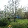 leonid_vlad: весна