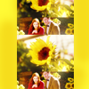 Goosey: (Doctor Who) Of sunflowers.