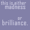 Madness or brilliance