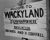 Welcome To Wackyland