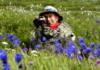 Алтай - синие цветы