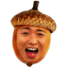 Nutty Ohno Acorn!