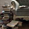диван и книги