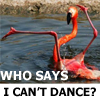 cantdance
