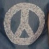 PR S13 Sean Peace sign