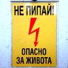 varya_davydova