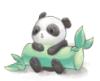 panda9578