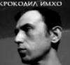 awolvin userpic