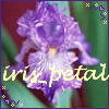iris_petal userpic