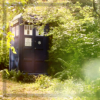 honor_reid: TARDIS