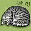 ashley art