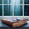 Books - window