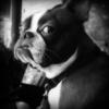 charliemarlowe userpic