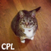 crazy_pet_lady userpic