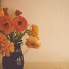 [stock] flowers