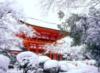 Kyoto, kamigamo shrine