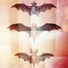 three bats