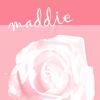 maddie_pink rose_roji