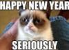 Grumpy Cat New Year from freeinternetpic