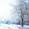safirakey: Seasonal