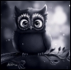 owl_thoughts userpic