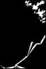 facelessdm userpic