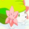 shaymin userpic