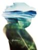 bible_freedom userpic