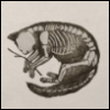 catb0nes userpic
