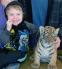 Gramma Lunacy: Ryan and Tiger