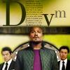 TW -- Deaton DVM