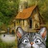 cat_window
