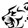 lionframes userpic