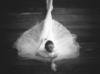 milana_tavi userpic
