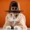 Thanksgiving growl