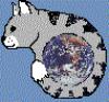 Earth Kat Logo